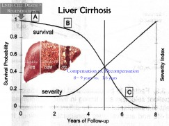 Liver Transplantation  How to Start A New Program