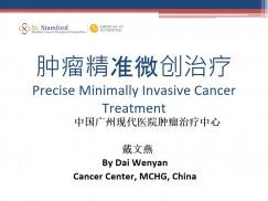 Precise Minimally Invasive Cancer Treatment
