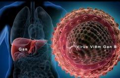 Viêm gan siêu vi và cách phòng bệnh