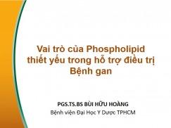 Vai trò của Phospholipid thiết yếu trong hỗ trợ điều trị Bệnh gan